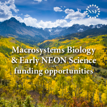 macrosystems Biology and Early career science funding advertisement square