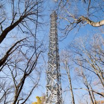 Flux tower amongst the trees at the SERC field site