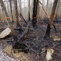 "Photos of wildfire damage at GRSM. Associated article ""NEON's Great Smoky Mountains Data will capture Tennessee fire impacts on local ecology"""