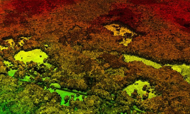 LiDAR image from Harvard Forest 2012