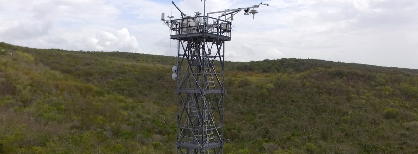 Flux tower at the GUAN field site in Puerto Rico