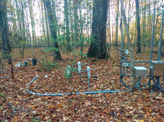 A sensor-based soil plot at the LENO site. Note that some sensors are only present in a subset of soil plots.