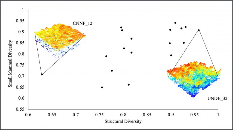 NEON structural diversity data used in Sarah Schooler's research