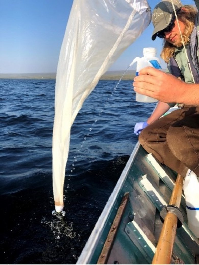 Field ecologists collect zooplankton from the water column at the Domain 18 TOOK  field site (Photo by Josh Monroe)
