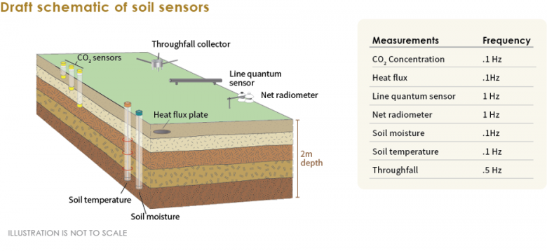 Schematic layout of a sensor-based soil plot. Note that some sensors are only present in a subset of soil plots.