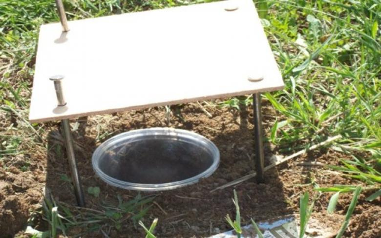 Pitfall trap used for beetle data collection